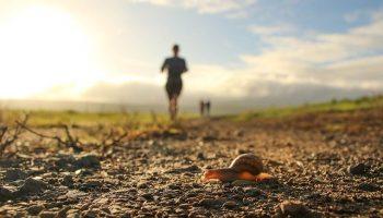 Motivation & Coaching sportif